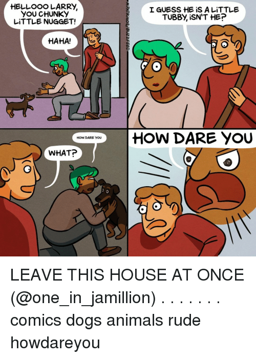 Animals, Dogs, and Memes: YOU CHUNKY  LITTLE NUGGET!  I GUESS HE iS A LITTLE  TUBBY, İSN'T HE?  HAHA!T  | HOW DARE YOU  HOW DARE YOU  WHAT? LEAVE THIS HOUSE AT ONCE (@one_in_jamillion) . . . . . . . comics dogs animals rude howdareyou