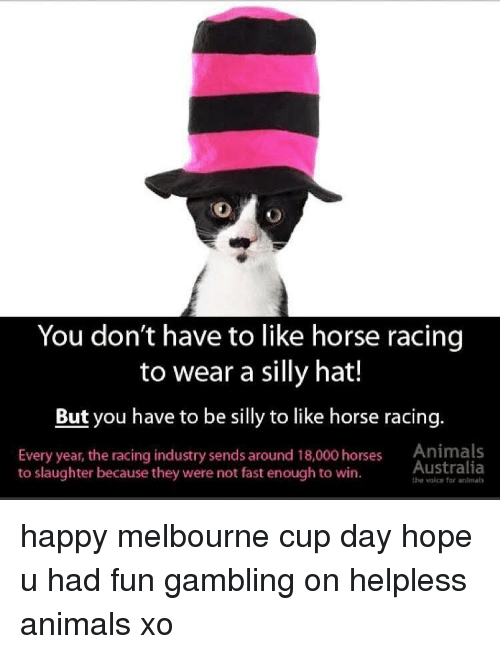 gambling: You don't have to like horse racing  to wear a silly hat!  But you have to be silly to like horse racing  Every year, the racing industry sends around 18,000 horses Animals  Australia  to slaughter because they were not fast enough to win.  the valce for anlmal happy melbourne cup day hope u had fun gambling on helpless animals xo