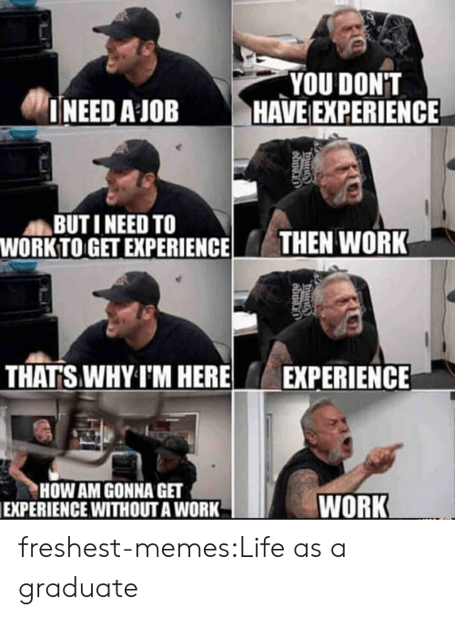 Work Work: YOU DONT  INEED AJOBHAVE EXPERIENCE  BUTI NEED TO  WORKTO GET EXPERIENCE HEN WORK  THAT'S WHY I'M HERE EXPERIENCE  HOW AM GONNA GET  EXPERIENCE WITHOUTA WORK  WORK freshest-memes:Life as a graduate