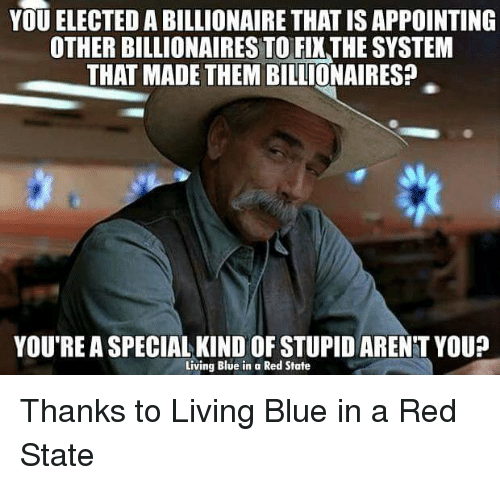 Memes, Blue, and Arent You: YOU ELECTED A BILLIONAIRE THATISAPPOINTING  OTHER BILLIONAIRES TO FIXTHE SYSTEM  THAT MADE THEM BILLIONAIRES?  YOU'RE A SPECIAL KIND OF STUPID ARENT YOU?  Living Blue in a Red State Thanks to Living Blue in a Red State