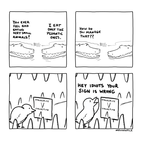 Feel Bad: You EVER  I EAT  ONLY THE  PEDANTIC  ONES  FEEL BAD  EATING  VERY SMALL  ANIMALS?  How Do  You MANAGE  THAT??  V  HEY IDIOTS YouR  SIGN IS WRONG  STALAGMITE  V  STALAGMITE  V.  STALACTITE  STALACTITE  NATHANWPYLE