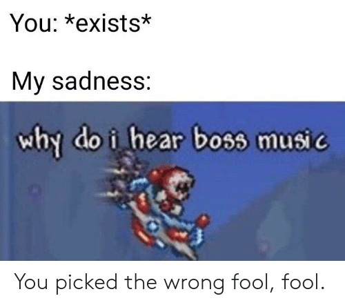 fool: You: *exists*  My sadness:  why do i hear boss music You picked the wrong fool, fool.