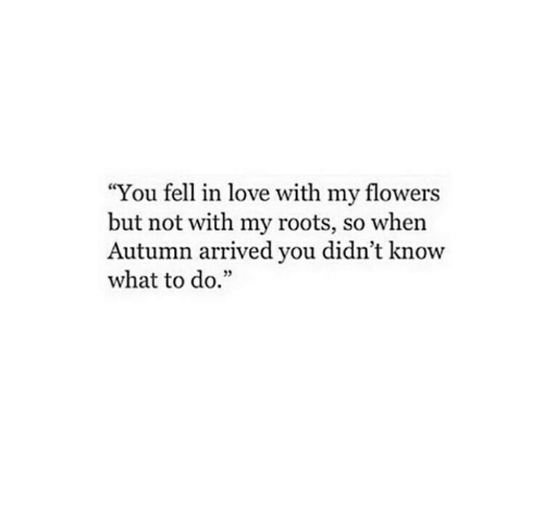 "Love, Flowers, and Roots: ""You fell in love with my flowers  but not with my roots, so when  Autumn arrived you didn't know  what to do.""  35"