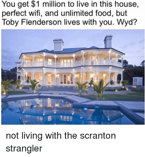 Food, Memes, and Wyd: You get $1 million to live in this house,  perfect wifi, and unlimited food, but  Toby Flenderson lives with you. Wyd? not living with the scranton strangler