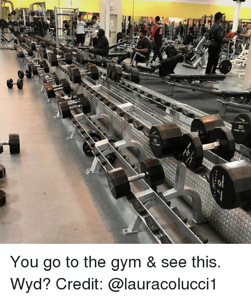 Gym, Memes, and Wyd: You go to the gym & see this. Wyd? Credit: @lauracolucci1