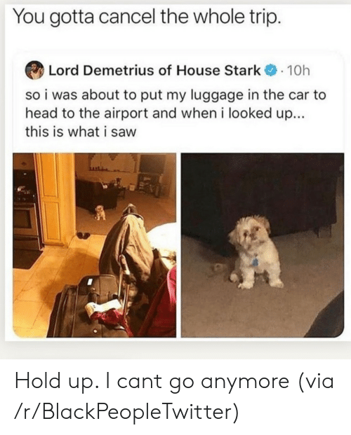 Blackpeopletwitter, Head, and Saw: You gotta cancel the whole trip.  Lord Demetrius of House Stark10h  so i was about to put my luggage in the car to  head to the airport and when i looked up...  this is what i saw Hold up. I cant go anymore (via /r/BlackPeopleTwitter)