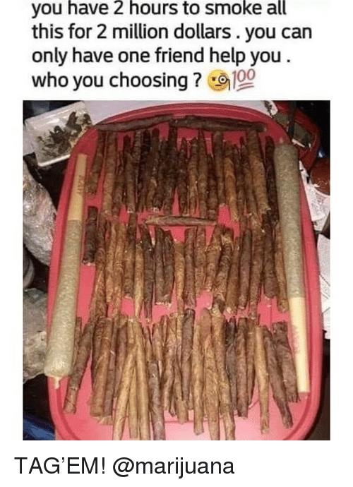Anaconda, Weed, and Help: you have 2 hours to smoke all  this for 2 million dollars. you can  only have one friend help you  who you choosing ? 100 TAG'EM! @marijuana