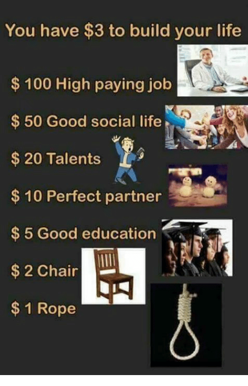 Jobbed: You have $3 to build your life  $100 High paying job  50 Good social life  $20 Talents  $ 10 Perfect partner  $5 Good education  $ 2 Chair  $1 Rope