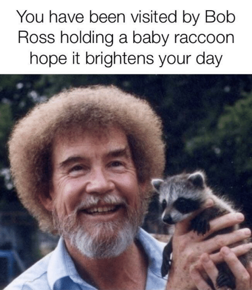 Bob Ross, Raccoon, and Hope: You have been visited by Bob  Ross holding a baby raccoon  hope it brightens your day