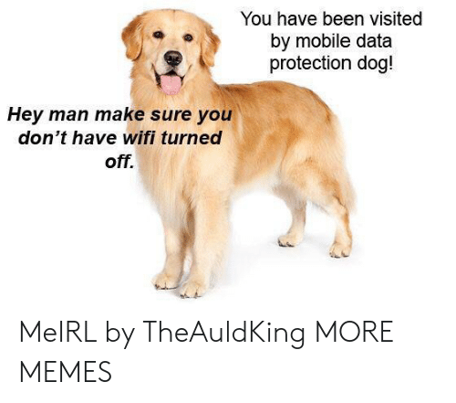 Dank, Memes, and Target: You have been visited  by mobile data  protection dog!  Hey man make sure you  don't have wifi turned  off. MeIRL by TheAuldKing MORE MEMES