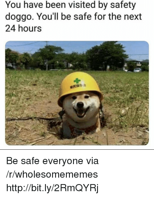 Http, Been, and Doggo: You have been visited by safety  doggo, You'll be safe for the next  24 hours Be safe everyone via /r/wholesomememes http://bit.ly/2RmQYRj
