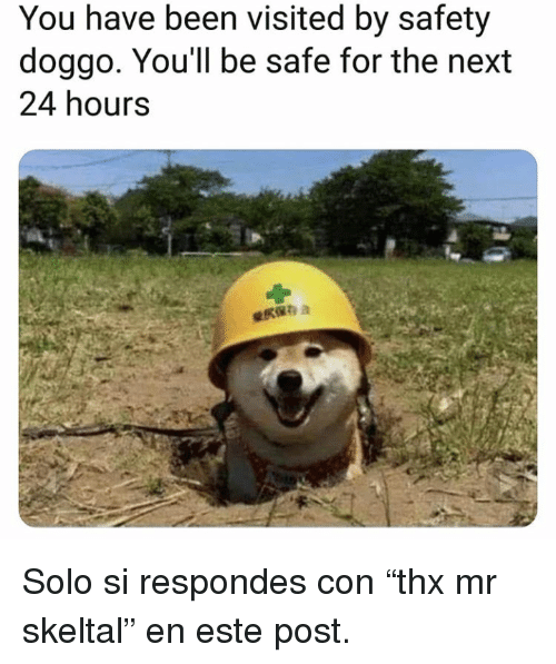 """Been, Doggo, and Next: You have been visited by safety  doggo. You'll be safe for the next  24 hours Solo si respondes con""""thx mr skeltal"""" en este post."""