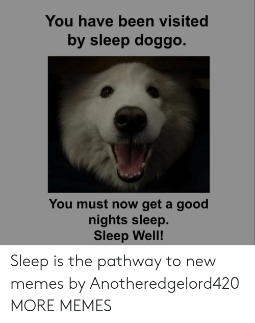 sleep well: You have been visited  by sleep doggo  You must now get a good  nights sleep.  Sleep Well! Sleep is the pathway to new memes by Anotheredgelord420 MORE MEMES