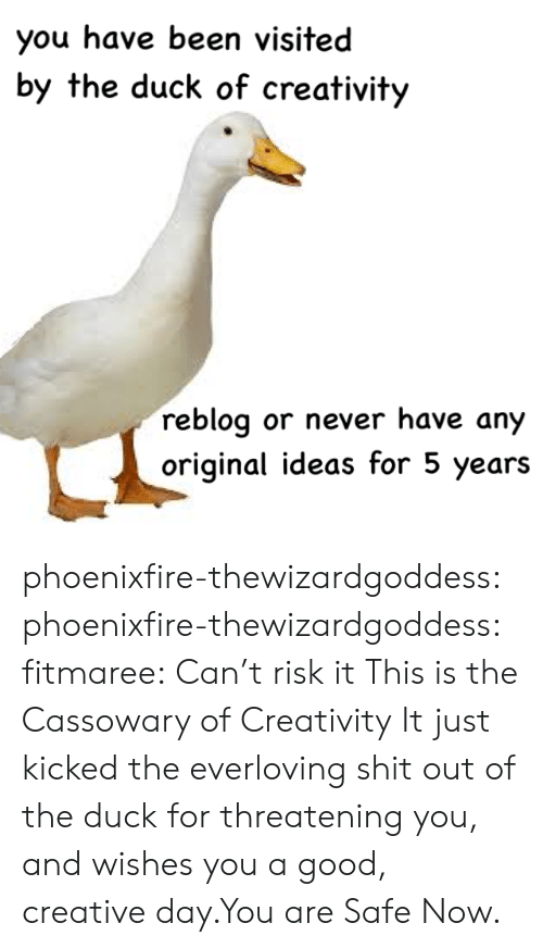 Shit, Target, and Tumblr: you have been visited  by the duck of creativity  reblog or never have any  original ideas for 5 years phoenixfire-thewizardgoddess: phoenixfire-thewizardgoddess:  fitmaree: Can't risk it This is the Cassowary of Creativity  It just kicked the everloving shit out of the duck for threatening you, and wishes you a good, creative day.You are Safe Now.