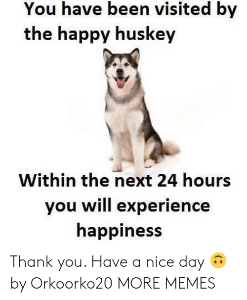 Dank, Memes, and Target: You have been visited by  the happy huskey  Within the next 24 hours  you will experience  happiness Thank you. Have a nice day 🙃 by Orkoorko20 MORE MEMES