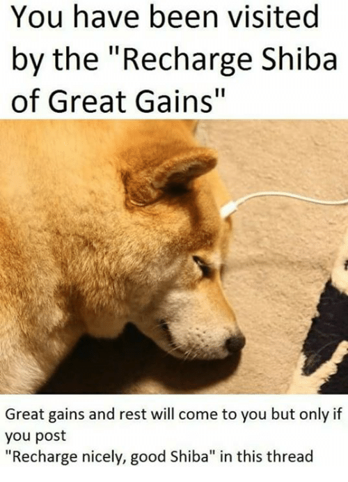 """Good, Been, and Rest: You have been visited  by the """"Recharge Shiba  of Great Gains""""  Great gains and rest will come to you but only if  you post  """"Recharge nicely, good Shiba"""" in this thread"""