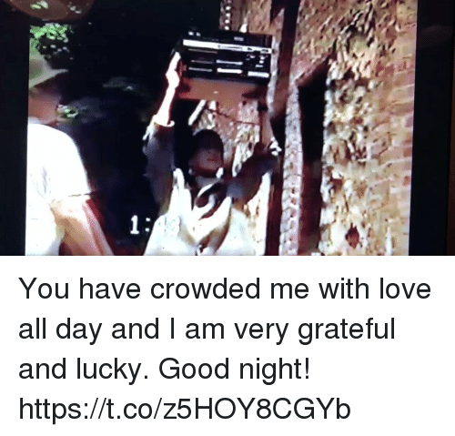 Love, Memes, and Good: You have crowded me with love all day and I am very grateful and lucky.  Good night! https://t.co/z5HOY8CGYb