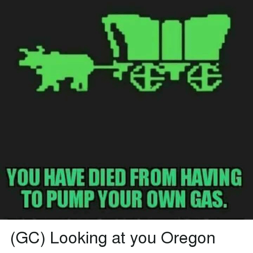 Memes, Oregon, and 🤖: YOU HAVE DIED FROM HAVING  TO PUMP YOUR OWN GAS. (GC) Looking at you Oregon