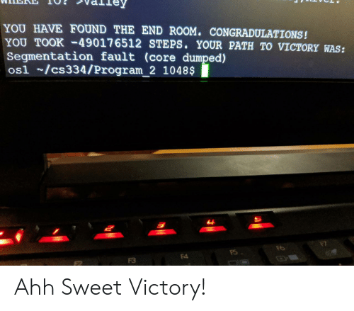 Dumped: YOU HAVE FOUND THE END ROOM. CONGRADULATIONS!  YOU TOOK-49017 6512 STEPS. YOUR PATH TO VICTORY WAS:  Segmentation fault (core dumped)  os1 /cs334/Program_2 1048$  म  F4  F3 Ahh Sweet Victory!
