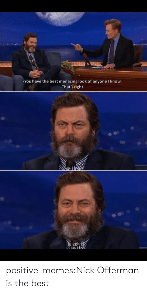 Memes, Nick Offerman, and Tumblr: You have the best menacing look of anyone I know.  That's right.  iggle positive-memes:Nick Offerman is the best