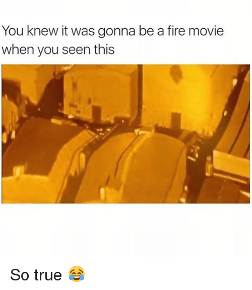Fire, Memes, and True: You knew it was gonna be a fire movie  when you seen this So true 😂