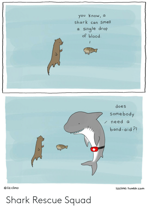 Lizclimo Tumblr: you know, a  shark can Smell  a single drop  of blood  does  Somebody  need a  band-aid?I  O liz climo  lizclimo. tumblr.com Shark Rescue Squad