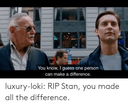 Stan, Tumblr, and Blog: You know, I guess one person  can make a difference. luxury-loki:  RIP Stan, you made all the difference.