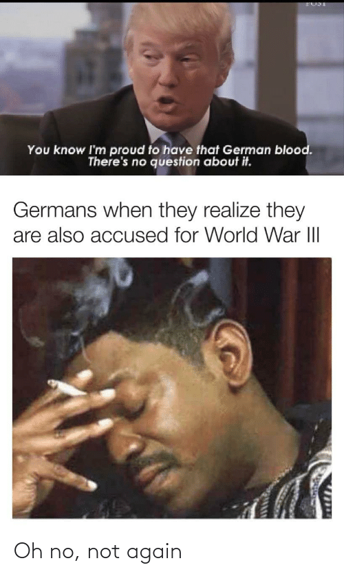 Im Proud: You know I'm proud to have that German blood.  There's no question about it.  Germans when they realize they  are also accused for World War III  1714 Oh no, not again