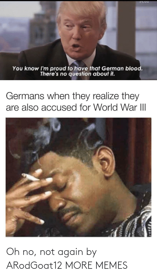 Im Proud: You know I'm proud to have that German blood.  There's no question about it.  Germans when they realize they  are also accused for World War III  1714 Oh no, not again by ARodGoat12 MORE MEMES