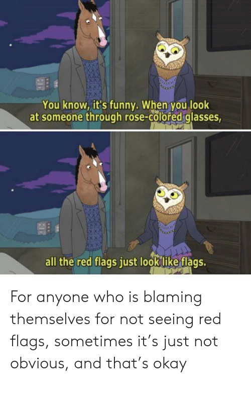 Funny, Glasses, and Okay: You know, it's funny. When you look  at someone through rose-colored glasses,  all the red flags just look like flags. For anyone who is blaming themselves for not seeing red flags, sometimes it's just not obvious, and that's okay
