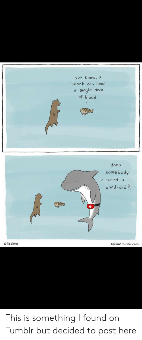 Lizclimo Tumblr: you know,  shark can Smell  a  single drop  of blood  a  does  Somebody  need a  band-aid?  Oliz climo  lizclimo. tumblr.com This is something I found on Tumblr but decided to post here
