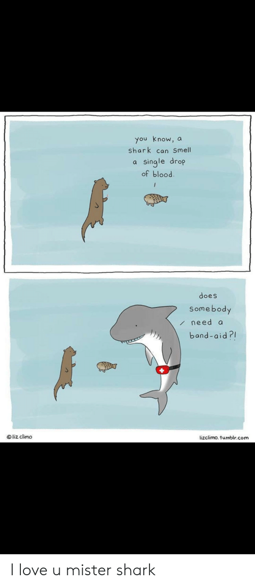 Lizclimo Tumblr: you know,  shark can Smell  a  single drop  of blood  a  does  Somebody  need a  band-aid?  Oliz climo  lizclimo. tumblr.com I love u mister shark