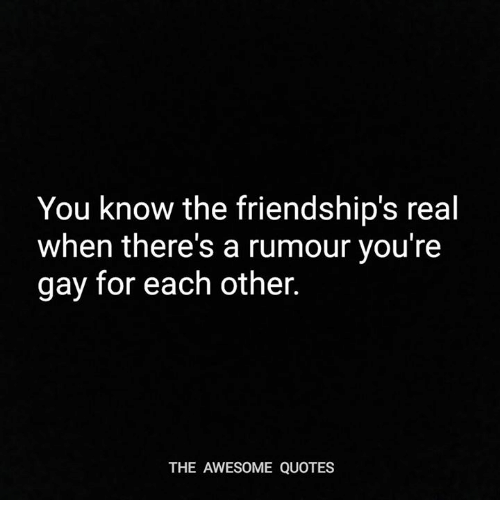 Quotes, Awesome, and Gay: You know the friendship's real  when there's a rumour you're  gay for each other.  THE AWESOME QUOTES