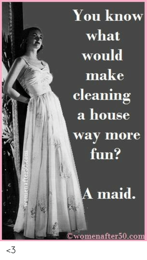 maid: You know  what  would  make  cleaning  a house  way more  fun:  A maid.  Cwomenafter50.com <3