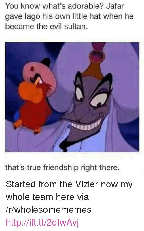 """jafar: You know what's adorable? Jafar  gave lago his own little hat when he  became the evil sultan.  that's true friendship right there. <p>Started from the Vizier now my whole team here via /r/wholesomememes <a href=""""http://ift.tt/2oIwAvj"""">http://ift.tt/2oIwAvj</a></p>"""
