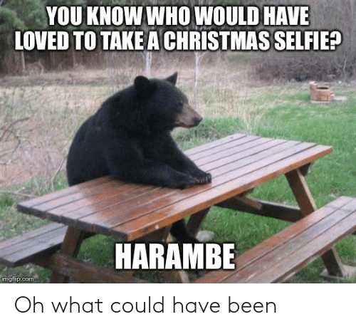 selfie: YOU KNOW WHO WOULD HAVE  LOVED TO TAKE A CHRISTMAS SELFIE?  HARAMBE  imgflip.com Oh what could have been