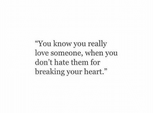"Love, Heart, and Them: ""You know you really  love someone, when you  don't hate them for  breaking your heart."""