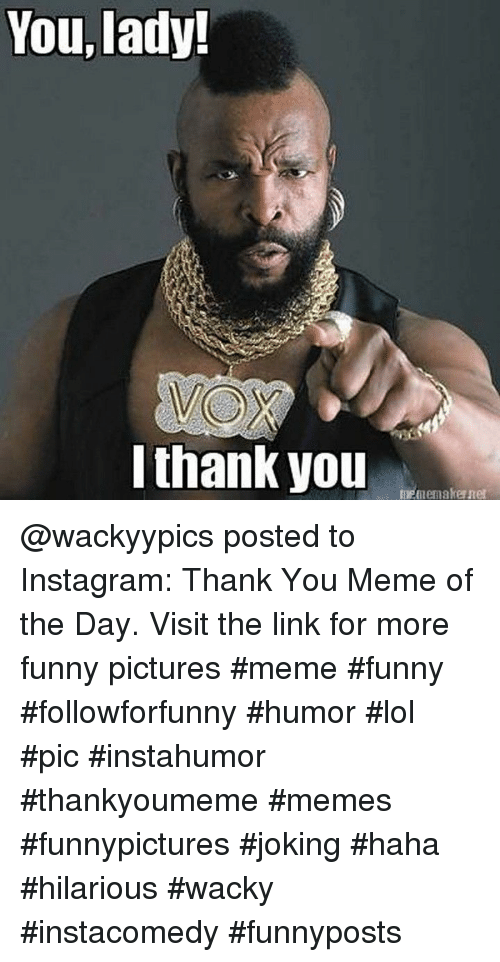 Thank You Meme: You, lady!  lthank you @wackyypics posted to Instagram: Thank You Meme of the Day. Visit the link for more funny pictures #meme #funny #followforfunny #humor #lol #pic #instahumor #thankyoumeme #memes #funnypictures #joking #haha #hilarious #wacky #instacomedy #funnyposts