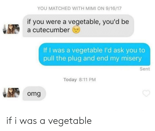 mimi: YOU MATCHED WITH MIMI ON 9/16/17  if you were a vegetable, you'd be  a cutecumber  If I was a vegetable I'd ask you to  pull the plug and end my misery  Sent  Today 8:11 PM  omg if i was a vegetable
