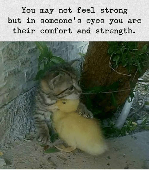 Strong, May, and You: You may not feel strong  but in someone's eyes you are  their comfort and strength