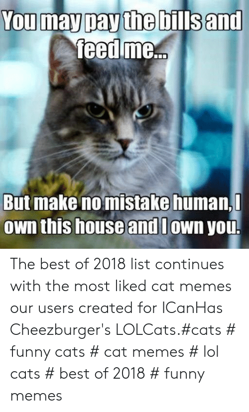 Cats, Funny, and Lol: You may pay the bills and  feed me...  But make no mistake human,  Own this house and lown you. The best of 2018 list continues with the most liked cat memes our users created for ICanHas Cheezburger's LOLCats.#cats # funny cats # cat memes # lol cats # best of 2018 # funny memes