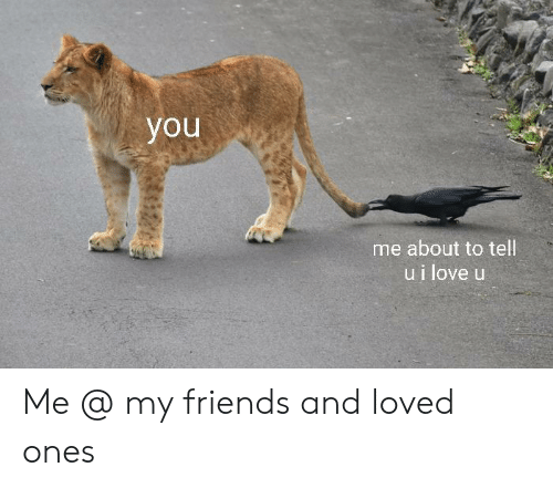 Friends, Love, and You: you  me about to tell  ui love u Me @ my friends and loved ones