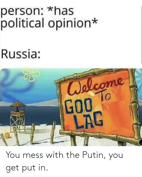 Putin: You mess with the Putin, you get put in.