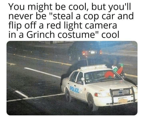 "The Grinch, Police, and Camera: You might be cool, but you'll  never be ""steal a cop car and  flip off a red light camera  in a Grinch costume"" cool  POLICE"