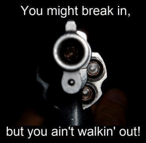 Conservative Memes: You might break in,  but you ain't walkin' out!