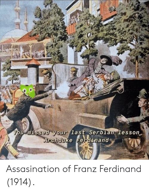 Serbian, Franz Ferdinand, and You: You misse Your Jast Serbian lesson  Archduke Fendinand Assasination of Franz Ferdinand (1914).