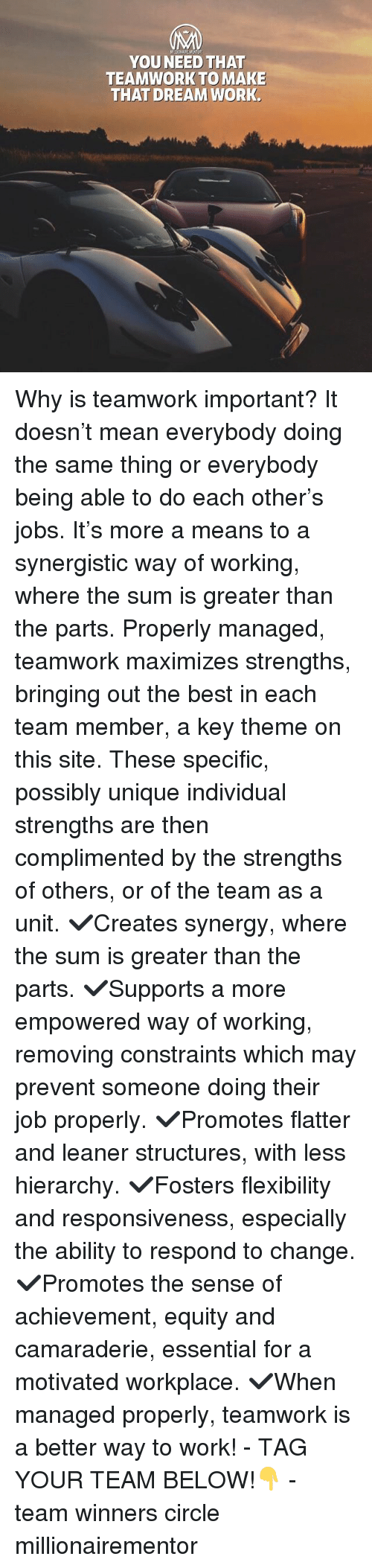 equity: YOU NEED THAT  TEAMWORK TO MAKE  THAT DREAM WORK Why is teamwork important? It doesn't mean everybody doing the same thing or everybody being able to do each other's jobs. It's more a means to a synergistic way of working, where the sum is greater than the parts. Properly managed, teamwork maximizes strengths, bringing out the best in each team member, a key theme on this site. These specific, possibly unique individual strengths are then complimented by the strengths of others, or of the team as a unit. ✔️Creates synergy, where the sum is greater than the parts. ✔️Supports a more empowered way of working, removing constraints which may prevent someone doing their job properly. ✔️Promotes flatter and leaner structures, with less hierarchy. ✔️Fosters flexibility and responsiveness, especially the ability to respond to change. ✔️Promotes the sense of achievement, equity and camaraderie, essential for a motivated workplace. ✔️When managed properly, teamwork is a better way to work! - TAG YOUR TEAM BELOW!👇 - team winners circle millionairementor