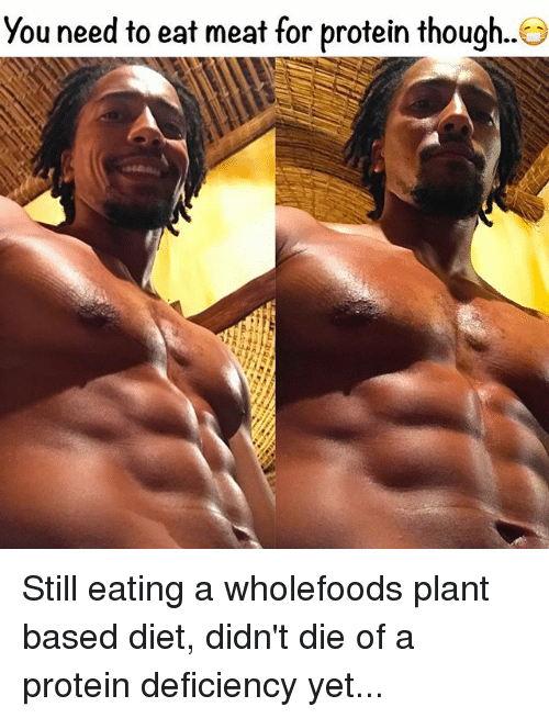 Memes, Protein, and Diet: You need to eat meat for protein though.. Still eating a wholefoods plant based diet, didn't die of a protein deficiency yet...