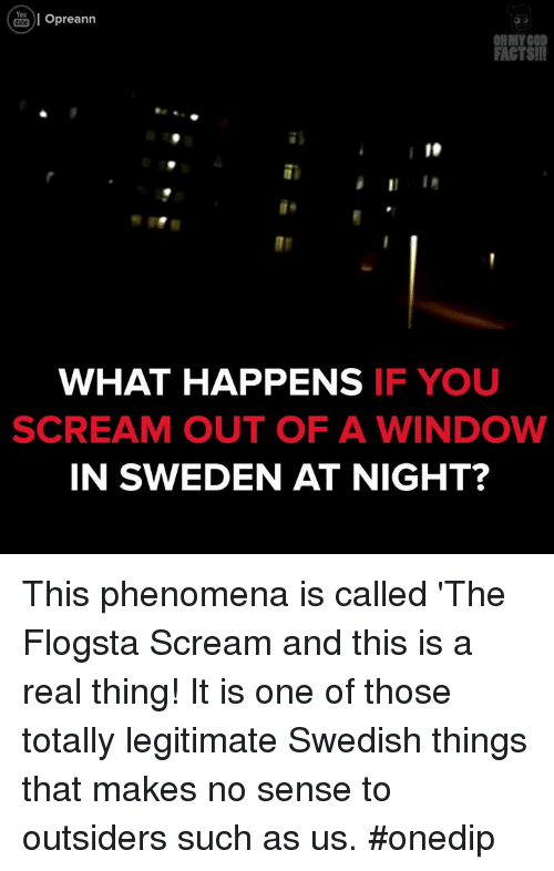 Memes, Oh My God, and Scream: You  Opreann  OH MY GOD  FACTS!!!  WHAT HAPPENS  IF YOU  SCREAM OUT OF A WINDOW  IN SWEDEN AT NIGHT? This phenomena is called 'The Flogsta Scream and this is a real thing! It is one of those totally legitimate Swedish things that makes no sense to outsiders such as us. #onedip