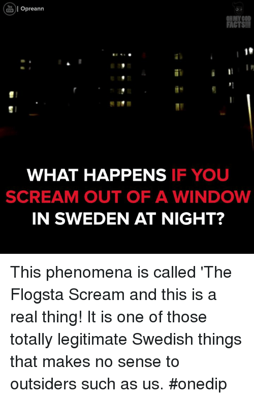 Memes, Scream, and Windows: You  Opreann  Ol OHMY GOD  FACTSII  WHAT HAPPENS  IF YOU  SCREAM OUT OF A WINDOW  IN SWEDEN AT NIGHT? This phenomena is called 'The Flogsta Scream and this is a real thing! It is one of those totally legitimate Swedish things that makes no sense to outsiders such as us. #onedip